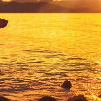 scarab-beacon-dog-safety-light-sunset