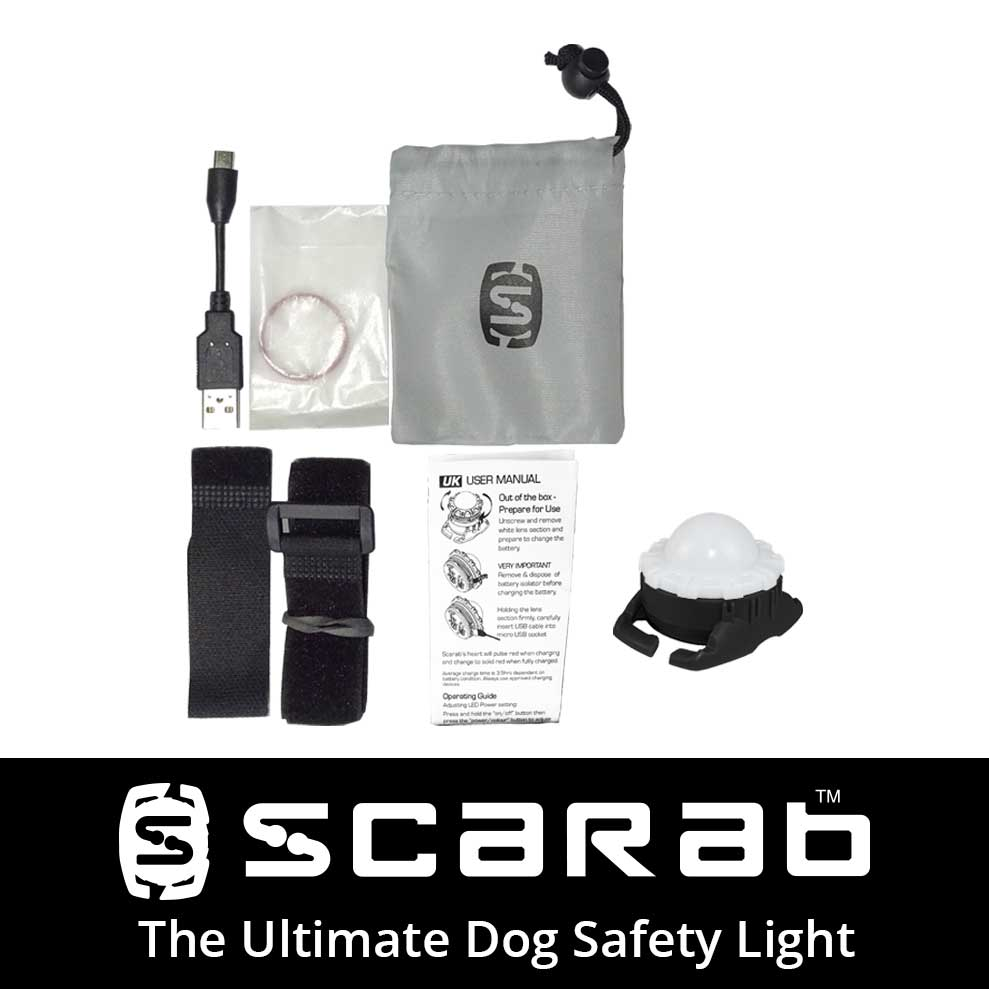Scarab Beacon Ultimate Dog Light Package Contents